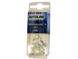 SULAKEBLISTER MINI GM 25A 5-KPL - GM mini sulake - 1569-10250 - 1